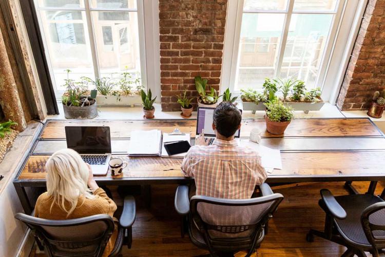 The Farm Soho - Coworking Space