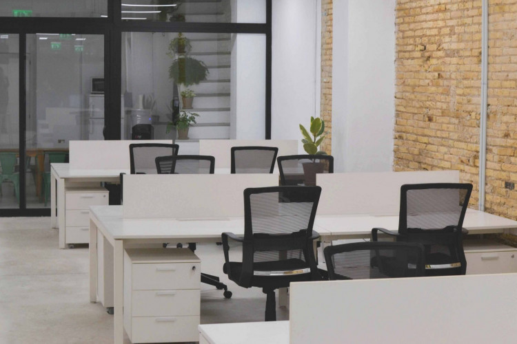 Botani.co - Coworking Space